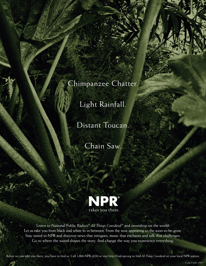 NPR Branding - Rainforest Ad