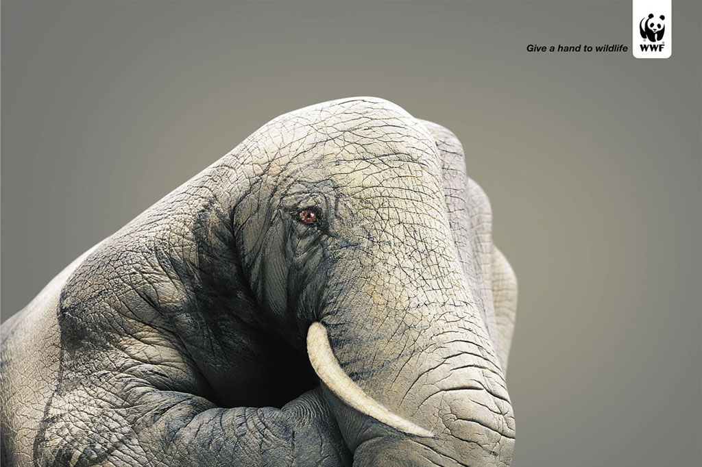 WWF Give A Hand To Wildlife Elephant Print PSA